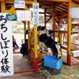 富士ミルクランドへ行ってきた!お子さんのいる家族連れには絶対にいってほしい観光施設だぞ!
